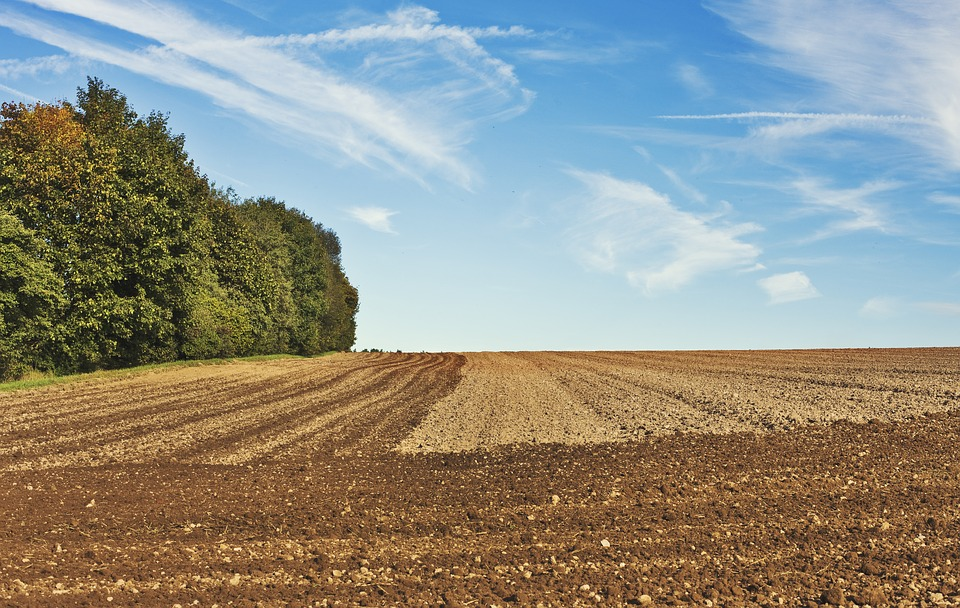 Zemljište, foto: Andreas, pixabay.com