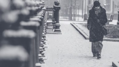 Ilustracija, zima, pixabay.com