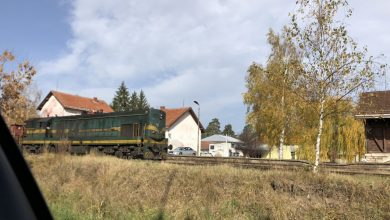 Voz, pruga, foto: M.S. Aleksinačke novine