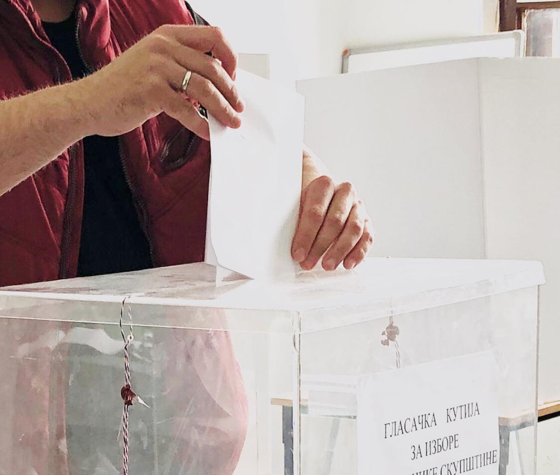 Izbori, ilustracija, foto: Aleksinačke novine